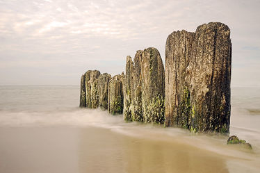 Strandbuhnen