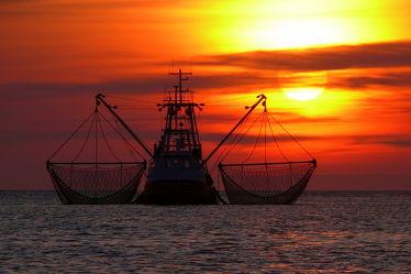 Bild mit boot,Meer,Nordsee,romantik,See,Schiffe und Meer,Ostfriesland,Seenebel,Abendstille,Netze,Kutter