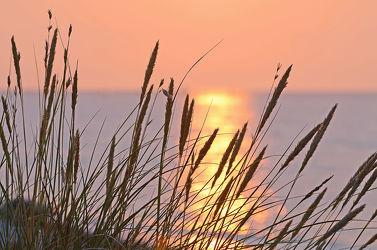 Bild mit Sonnenuntergang, Sonnenaufgang, Ostsee, Meer, Dünen, Dünengras, Am Meer, Abendlicht, Abendsonne, Ostseeküste, Ostseestrände, Ostseestrand
