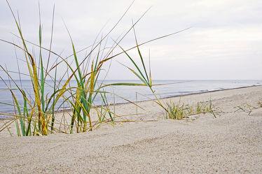 Bild mit Wasser,Gräser,Himmel,Wolken,Strände,Sand,Urlaub,Strand,Ostsee,Meer,Dünen,Gras,Küste,Reisen,Strand / Meer,Erholung,Wärme,warm,Relaxen,Ostseeküste,Ostseestrände,Tage,Tag,Erholen,Milde,Badeurlaub