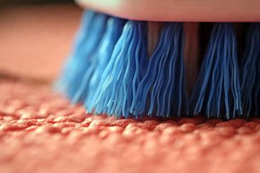 Bild mit Rosa, Blau, Extras, Borsten, Handbürste, Teppich, Arbeit, Reinigen