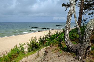 Bild mit Himmel,Bäume,Wolken,Birken,Strand,Meer,Strand / Meer,Ostseeküste,Steilküste,Polen