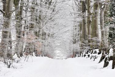 Winteralleen