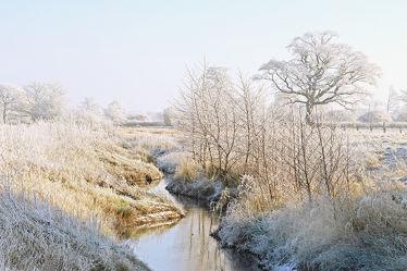 Bild mit Himmel, Bäume, Winter, Weiß, Sträucher, Blau, Sonne, Landschaft, Bach, Winterzeit, Wandern, Ausspannen, Raureif