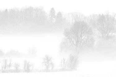 Bild mit Bäume, Winter, Schnee, Wolken, Sträucher, Nebel, Landschaft, Felder, Winterzeit, Wiesen, Idylle, Zäune