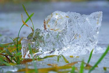 Bild mit Natur,Grün,Eis,Ruhe,Abstraktes,Kälte,Erholung,Frost