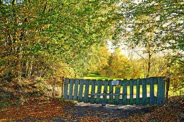 Bild mit Bäume, Schlösser, Gegenlicht, Park, garten, tor, Zaun, Kette, Grundstück, Privat, Verriegelung, Warnung, Schilder