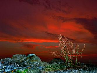 Bild mit Himmel, Himmel, Blaue_Stunde, Steinküste