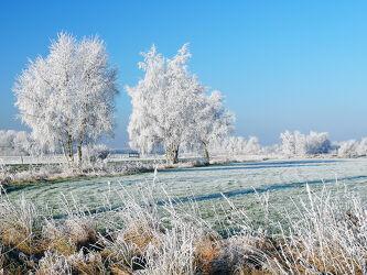 Bild mit Gräser, Himmel, Bäume, Blau, Nebel, Sonne, Frost, Wiesen, Atempause, Azur, Raureif, Dunst, Eisregen, Unwetter, Mittagssonne, Glätte, Warmluft, Kaltluft