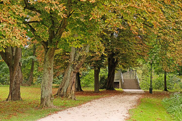 Bild mit Bäume, Brücke, Wanderweg, Park, alt, Ausspannen, Bad Kissingen, Edelstahl