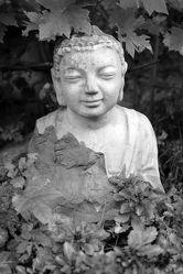 Bild mit Meditation, Ruhe, Entspannung, Buddha, Wellness, Fotografie, schwarz weiß, asien, Buddhismus, Religion