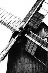 Bild mit Schwarz/Weiß Fotografie