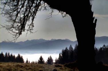 Bild mit Wasser, Landschaften, Seen, Meer, Seeblick