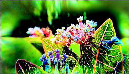 Blühendes grün
