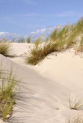 Bild mit Grün, Sand, Strand, Sandstrand, Ostsee, Dünen, Dünengras, Wellness, Strandhafer, Hell, freundlich