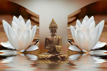 Bild mit Steine, Blume, Meditation, Entspannung, seerosen, Buddha, Wellness, Spa, seerose, Deko, Religion, glaube, shui