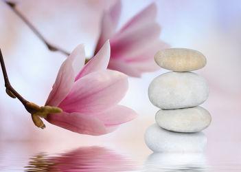 Bild mit Blumen, Stein, Steine, Steine, Blume, Pflanze, Meditation, balance, Ruhe, Entspannung, Buddha, Wellness, blüte, frisch, detail, Erholung, Deko, dekorativ, Dekoration, Magnolie, Symbol, Magnolienblüte, Zweig, relax, glaube, gleichgewicht, pastell, steinpyramide, steinstapel, symbolik