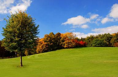 Bild mit Natur, Landschaften, Bäume, Jahreszeiten, Herbst, Horizont, Sonne, Baum, Berlin, Blätter, Landschaft, Wiese, Park, Bunt, Parkanlage, herbstlich, Idylle