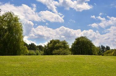 Bild mit Natur, Natur, Grün, Landschaften, Himmel, Bäume, Jahreszeiten, Wolken, Blau, Sommer, Sonne, Baum, Wolkenhimmel, Landschaft, Wiese, Flora, sommertag
