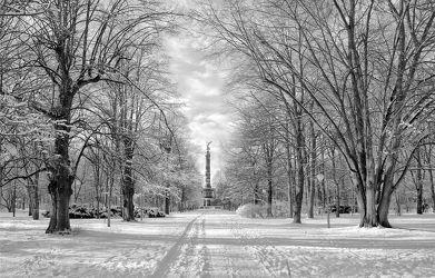 Bild mit Natur, Bäume, Winter, Schnee, Städte, Baum, Berlin, Weg, Landschaft, Stadt, Park, Denkmal, Siegessäule, schwarz weiß, SW, Grossstadt, parklandschaft, säule