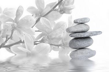 Bild mit Steine, Meditation, Ruhe, Buddha, Wellness, Spa, Magnolien, Magnolie, Zweig, steinstapel, Steinhaufen, zen, steinturm