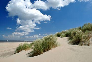 Bild mit Strände, Sand, Urlaub, Strand, Sandstrand, Düne, Dünen, Dünengras, Küste, Wellness, maritimes, Strandhafer, Traum