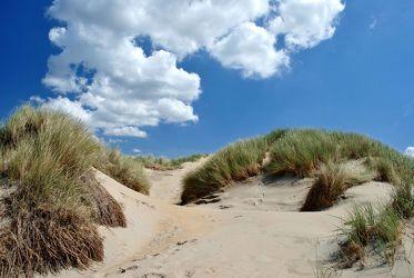 Ein himmlischer Tag in den Dünen