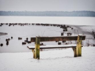 Bild mit Winter, Schnee, Bank, winterlandschaft, Winterlandschaften, Frost, Bänke