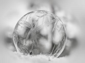 Bild mit Winter, Schnee, Eis, Winterzeit, Frost, ice