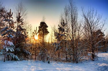 Bild mit Landschaften, Winter, Schnee, Wälder, Wald, Landschaft, Winterzeit, Frost