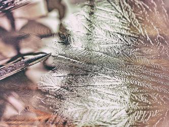 Bild mit Winter, Schnee, Eis, Kälte, Frost
