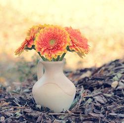 Bild mit Blumen, Gerberas, Sommer, Blume, Blumenstrauß, Gerbera, Blüten, garten, blüte, Blumenvase, pastell, gerberablüten