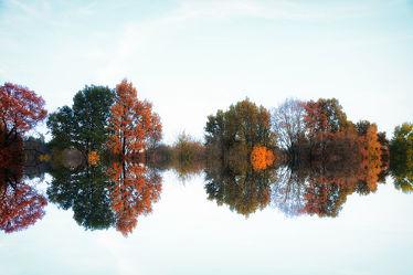 Bild mit Natur, Wasser, Bäume, Gewässer, Wälder, Seen, Wald, Baum, See, Spiegelung, Teich