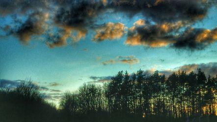 Bild mit Himmel, Bäume, Wolken, Baum, Wolkenhimmel, Landschaft, Wolken am Himmel, Blick in den Himmel durch die Baumkronen, Himmelsblick, Wolke