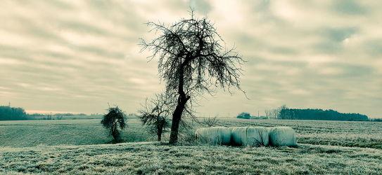 Bild mit Natur, Bäume, Deutschland, Blau, Baum, Landschaft, Nature, blue, landscape, Reisen, franken, landwirtschaft