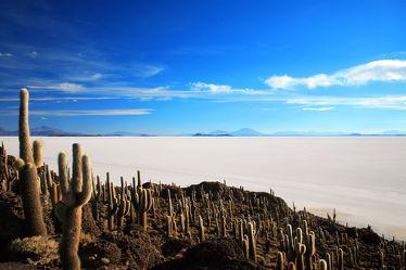 Bild mit Landschaften, Sand, Sonne, Landschaft, Sonnenschein, kakteen, Wüste, Kaktus, desert, sun, Sahara, Country, sunshine