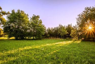 Bild mit Natur, Pflanzen, Himmel, Bäume, Jahreszeiten, Sträucher, Sommer, Sonnenaufgang, Landschaft, Ruhe, Entspannung, Sonnenstrahlen, Wiesen, Wachstum, draußen