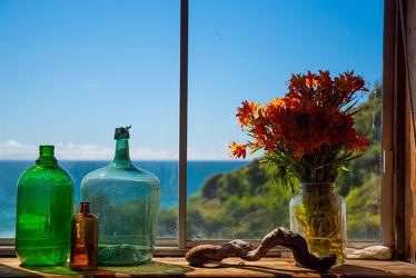 Bild mit Himmel, Holz, Blau, Glas, Fenster, Spiegelungen, Stilleben, Blüten, Wurzeln, Wurzel, aussicht, Reflexionen, Durchblick, Pflanzen Flaschen