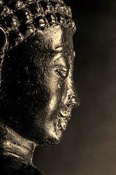 Bild mit Makro, Licht, Blick, Buddha, monochrom, Portrait, nahaufnahme, Religion, Gesicht, Glauben, Schatten, figur, künstlich