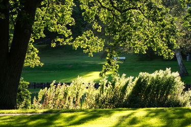 Bild mit Natur, Wasser, Pflanzen, Bäume, Sommer, Sonne, Wald, Gras, Licht, Ruhe, Park, Park, Teich, Erholung, Relaxen, Schatten, Travemünde, Grünanlage, Grüngürtel, Goodewind