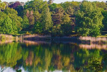 Bild mit Wasser, Jahreszeiten, Wellen, See, Ruhe, Entspannung, Teich, Spiegelungen, Erholung, Reflexionen