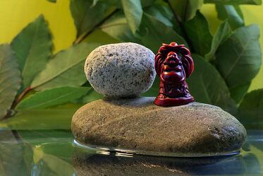 Bild mit Wasser, Pflanzen, Steine, Makro, Licht, Buddha, nahaufnahme, Schatten, Symbol, figur