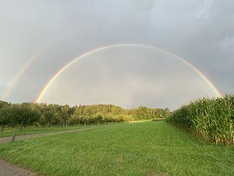 Bild mit Natur, Sonne, Regenbögen, Regenbogenfarben
