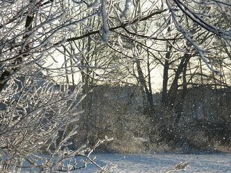 Bild mit Winter, Schnee, winterlandschaft, Winterlandschaften, Winteraufnahmen, Landschaften im Winter, Winterbilder, Winterwelt, Zweige, Wintereinbruch