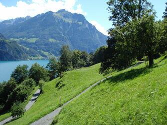 Bild mit Natur, Wiese, berg, Schweiz