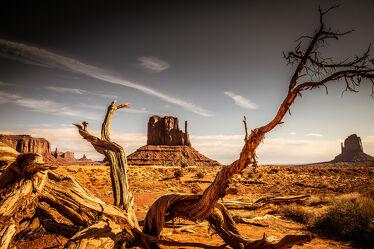 Bild mit Landschaften, USA, wüstenlandschaft, USA Nationalparks
