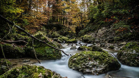 Bild mit Herbst, Bach, Waldbach, Bach im Wald, Landschaften im Herbst, Goldener Herbst, Herbststimmung