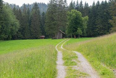 Bild mit Landschaften, Wald, Waldlichtung, Waldweg, Haus, Landschaft, Wanderweg, landscape, waldwege