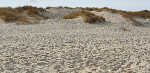 Bild mit Strand, Sandstrand, Strandblick, Dünenlandschaft, Dünen panorama, Dünen panorama