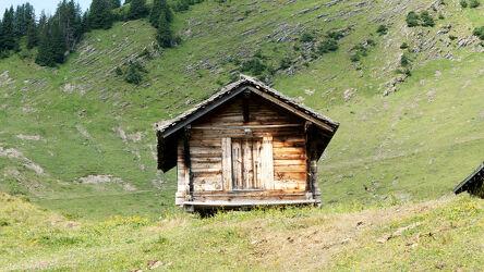 Bild mit Natur, Bäume, Felsen, Sommer, Alm, Wiese, Berghütte, schweizeralpen, Berner Oberland